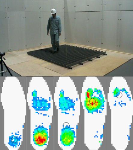 ラットコンベア上の歩行実験と歩行中の足底圧分布の変化