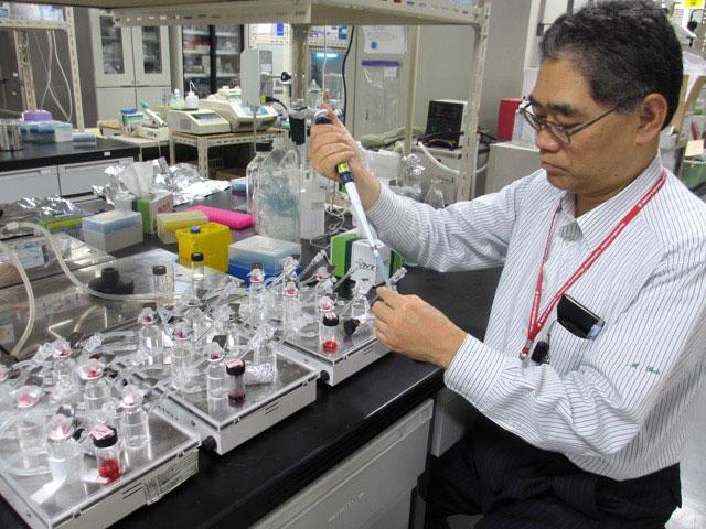 経皮ワクチンの実験をする後藤教授
