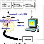 Neuroimaging and Neuroinformatics