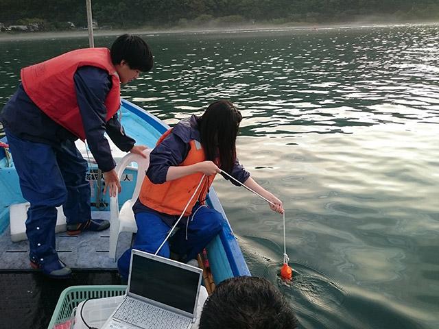 Field survey at estuary